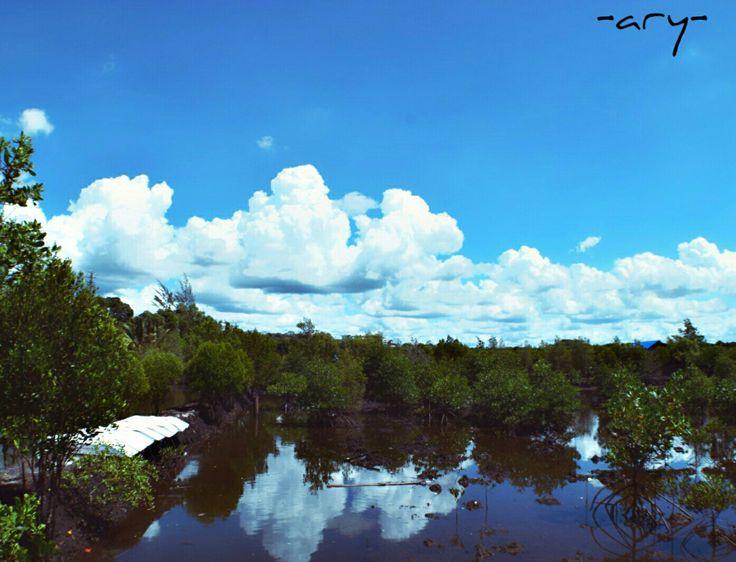 Hutan Mangrove, Bontang