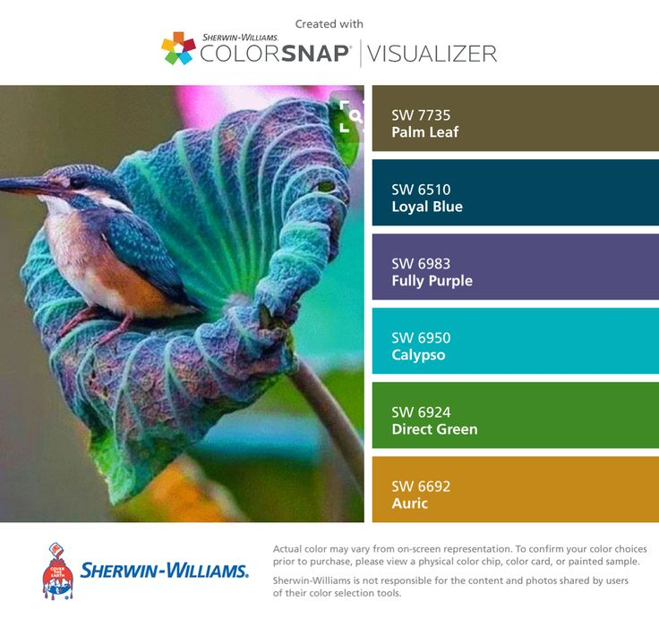 I found these colors with ColorSnap® Visualizer for iPhone by Sherwin-Williams: Palm Leaf (SW 7735), Loyal Blue (SW 6510), Fully Purple (SW 6983), Calypso (SW 6950), Direct Green (SW 6924), Auric (SW 6692).