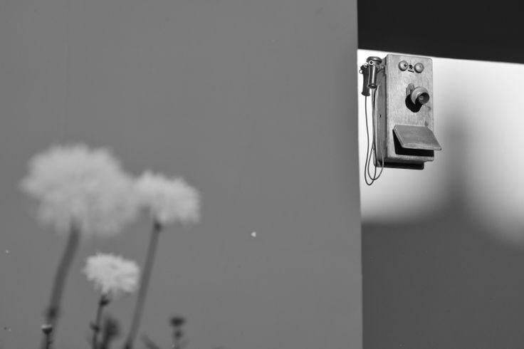 teléfono y flores blanco y negro