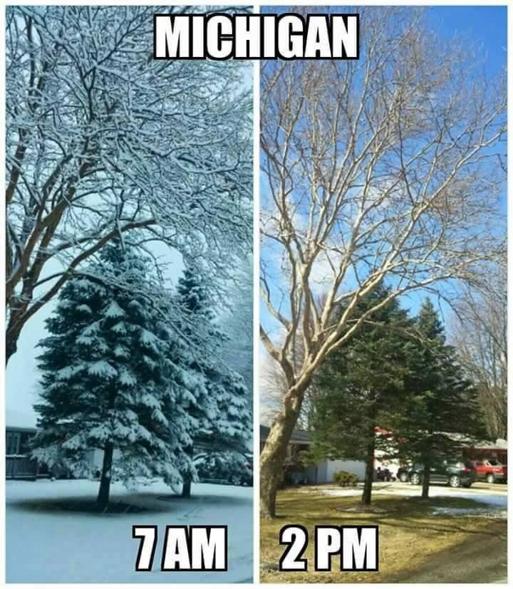 This was today 3/31/2015. 4 inches of snow. But 20 miles away, no snow and sunny while it's still snowing here. By afternoon, melting snow is pouring off the roof. Mother Nature, that's called menopause and there's medication!