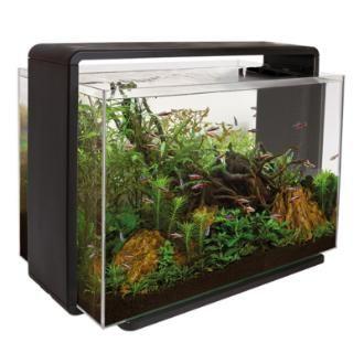 43 best fish tanks images on pinterest fish aquariums aquariums and fish tanks. Black Bedroom Furniture Sets. Home Design Ideas