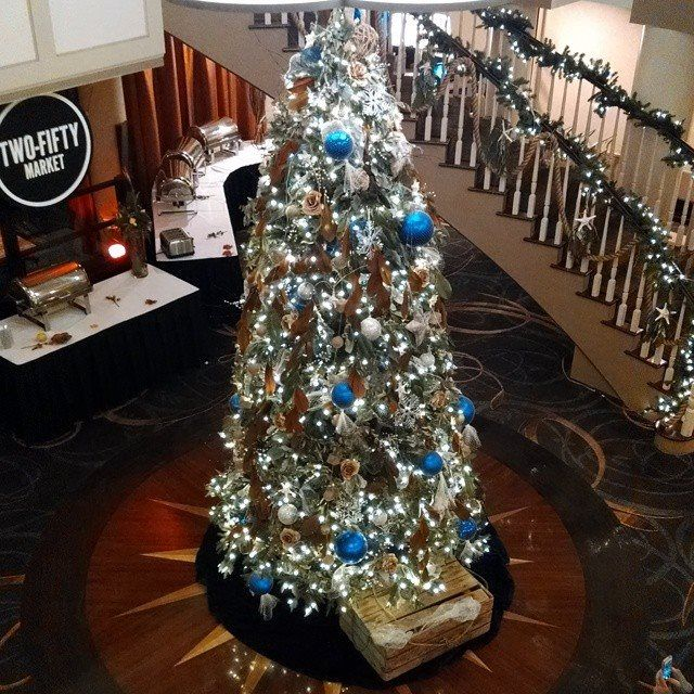 Christmas Tree Collection Portsmouth : Images about sheraton portsmouth harborside hotel on