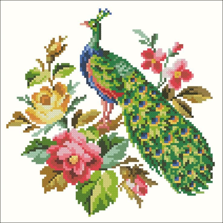 Peacock, rose, and camellia | Chart for cross stitch (Berlin work).