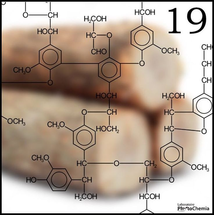 25 days of #PhytoChristmas : Chemistry Edition ! ************************************************************** Complex organic polymer which gives its structure and rigidity to you Christmas tree. What am I?  Yesterday's answer : Tyramine  #phytochemia #teamphytochemia #phytofamous #laboratory #lab #essentialoils #chemistryisfun #scienceisfun #phytochemistry #saguenay #quebec #phyto #scienceoninstagram #chemist #chemistry #scientist #sciencelover #naturalproducts #instascience #uqac