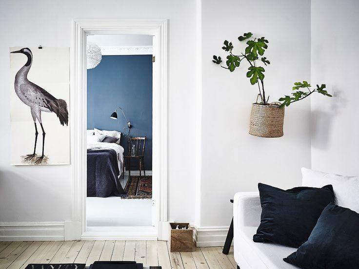 15x Eucalyptus Huis : 380 besten decor8 bilder auf pinterest badezimmer hausaufgaben