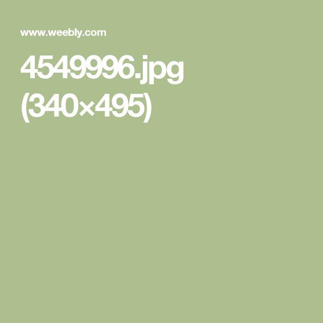 4549996.jpg (340×495)