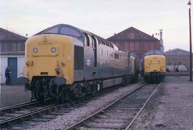 """Leading a trio of withdrawn locomotives 55018 (D9018) """"BALLYMOSS"""" stands at Doncaster Works on the 29th November 1981, also seen are 55005 (D9005) """"THE PRINCE OF WALES'S OWN REGIMENT OF YORKSHIRE"""" (withdrawn 08.02.81) and on the right of the picture 55011 (D9011) """"ROYAL NORTHUMBERLAND FUSILIERS"""" (withdrawn 08.11.81). 55018 was cut up at Doncaster during January 1982."""