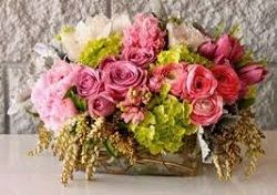 Are you looking for a perfect flower gift to give to a loved one for a special occasion? Look no further and wider than from your local florist. The Flower Delivery Singapore that you want to send is always available in any local flower shop. The local Florist Singapore can even make one for you