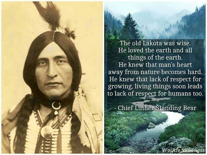luther standing bear nature essay