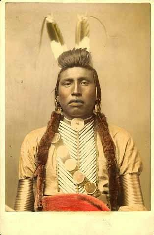 Best of, Crow Indian Portraits. White Bull photographed in 1880.