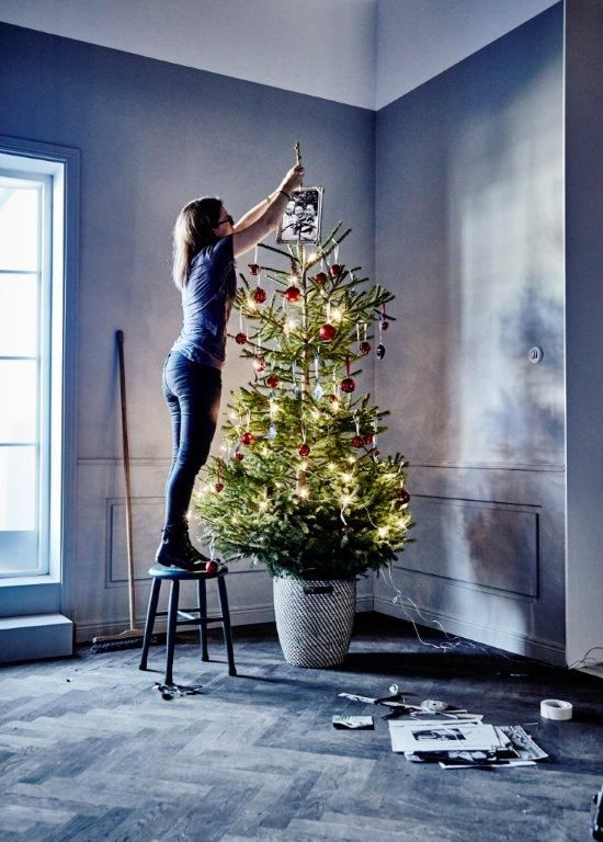 17 best images about happy holidays on pinterest trees for Best looking christmas tree