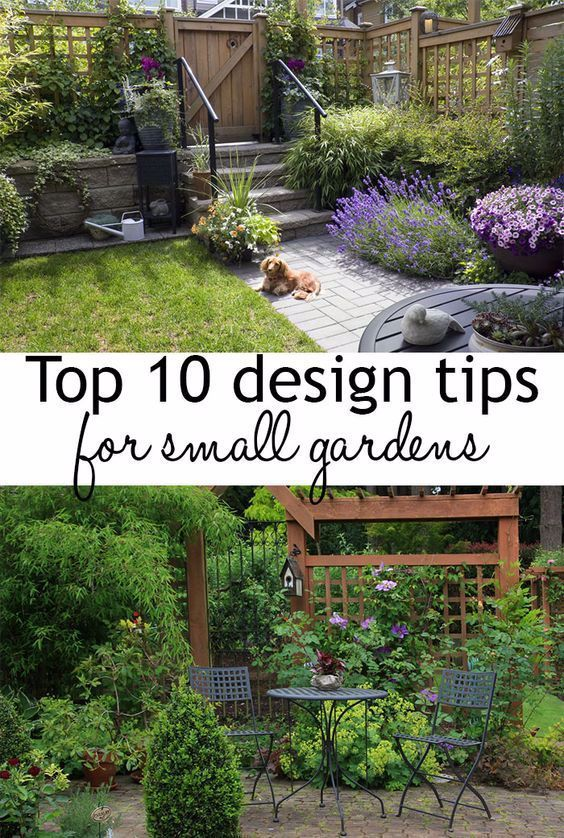 10 Design Tips To Make The Most Of Small Garden Spaces Use These Garden Designer Tips And Tricks For Small Backyard Gardens Small Gardens Small Garden Design