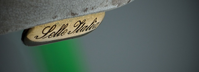 Selle Italia saddle