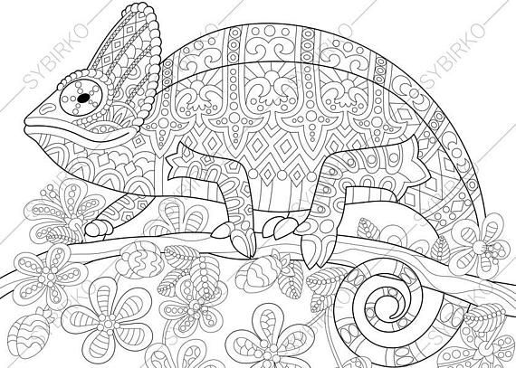 51 best animals images on pinterest coloring books