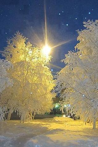 Enjoy the Beauty of Winter.                                                                                                                                                     More