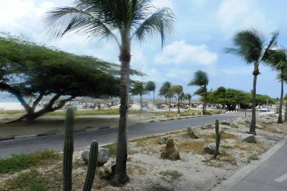 Aruba is smaller than Catalina and supports a population that speaks 5 languages. The main income is tourists. Visit the page and look for links to my other Marriott Vacation Club resorts reviews.