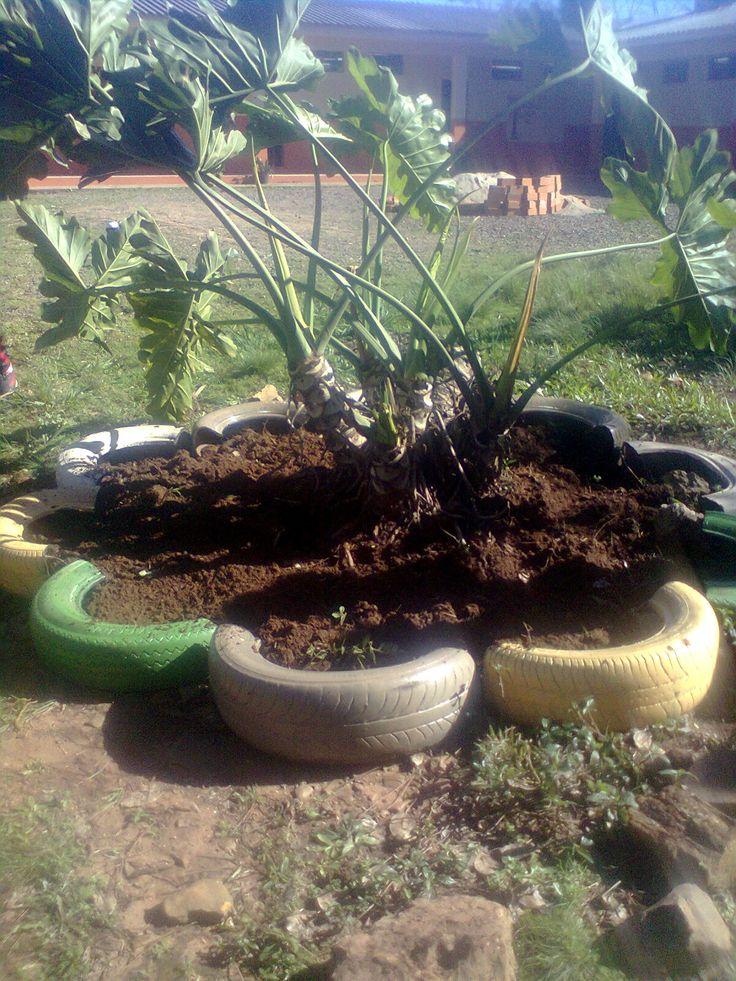 reciclagens de pneus