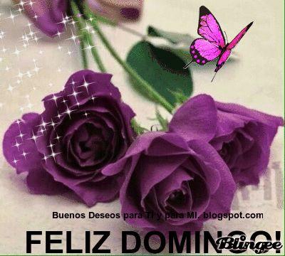 Buenos Deseos para TI y para MÍ: * FELIZ DOMINGO ! Que tengas un Feliz y Bendecido ...