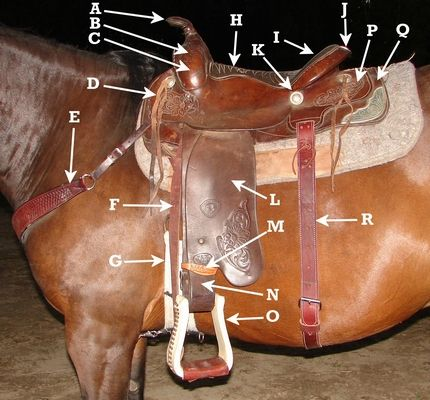 how to put a new cinch on a western saddle