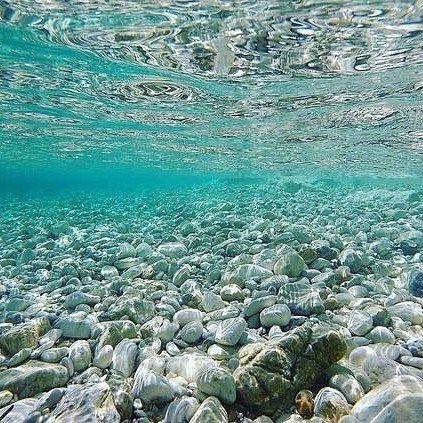 "Ionian Sea Underwater .    By @willw79  @Wonderful.Greece   #WonderfulGreece #Wonderful_Greece #Greece #Grèce #Grecia #Griechenland  #Греция #希腊  #ギリシャ #الإغريق""  #Ελλάδα  #Hellas ¤ .    #IonianSea  #Ionian #Ιονιο .    @Greek_Blue #GreekBlue"