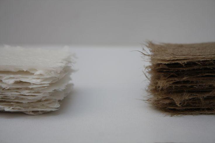 2013 fibra cotone fibra juta