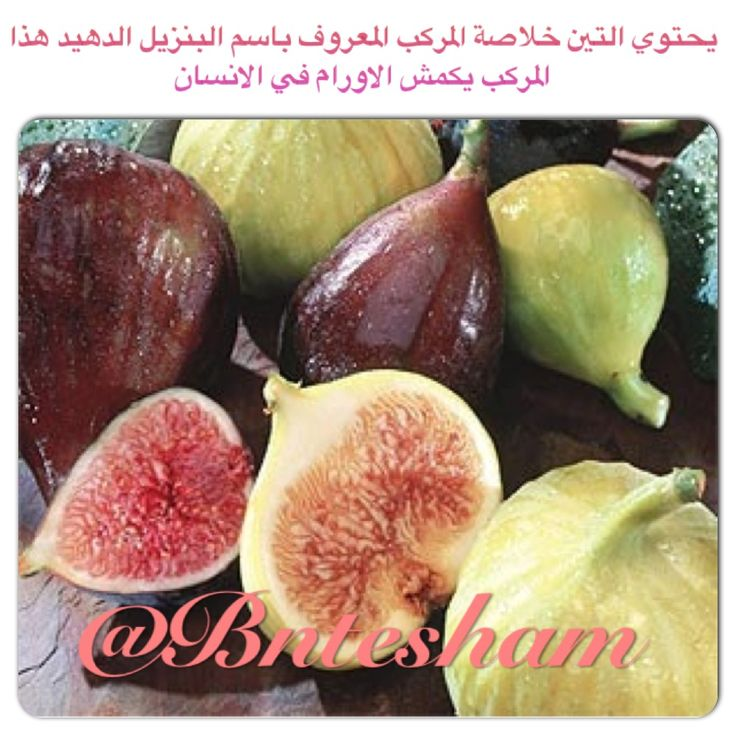 seven foods mentioned in quran Foods of the prophet allow your food to cool before eating ginger (zanjabil)--ginger is mentioned in the holy qur'an (76:17.