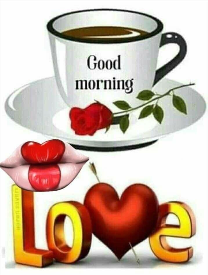 Oi Meu Amor Quero Lhe Dizer Que Estou Aviciada Em Voce E Que Amo Voce De Paixao Good Morning Love Good Morning Greetings Good Morning Quotes