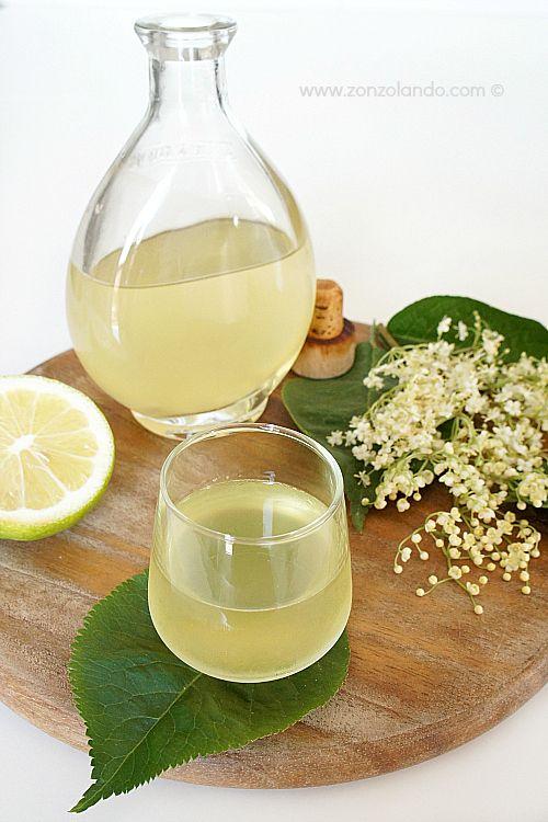 Sciroppo di fiori di sambuco - Elderflower syrup   From Zonzolando.com