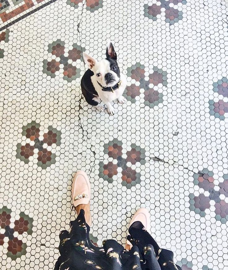 """9,673 Likes, 17 Comments - I Have This Thing With Floors (@ihavethisthingwithfloors) on Instagram: """"Have a lovely weekend with your loved ones  #ihavethisthingwithfloors by @babba.c"""""""