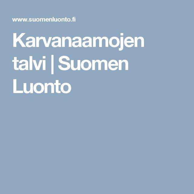 Karvanaamojen talvi | Suomen Luonto