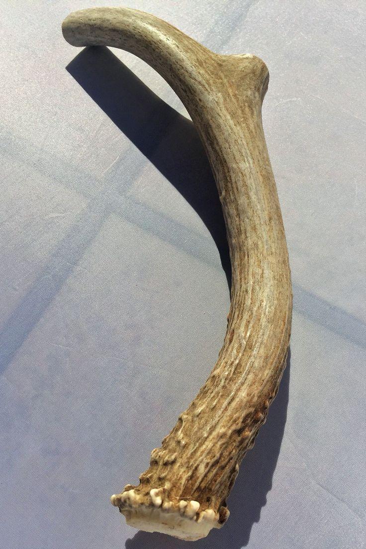 All Natural Deer Antler Dog Chews