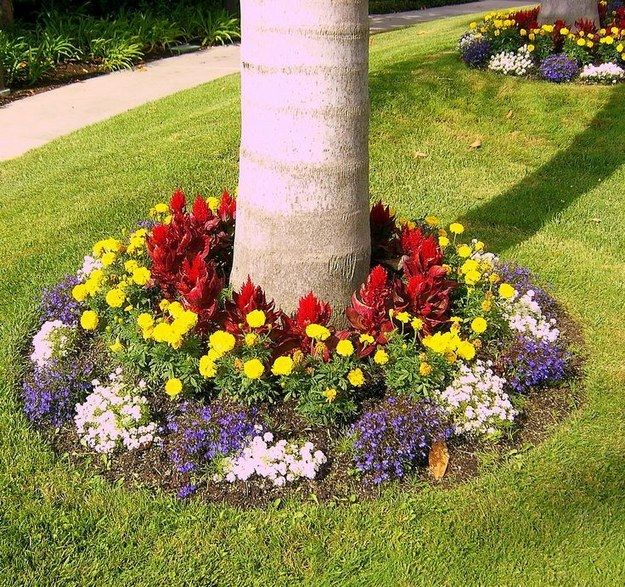 Create a flower bed around your trees for another well-contained pop of color. | 39 Budget Curb Appeal Ideas That Will Totally Change Your Home