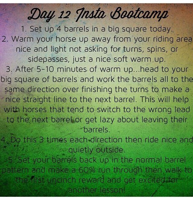 Day 11 insta boot camp Fallon taylor