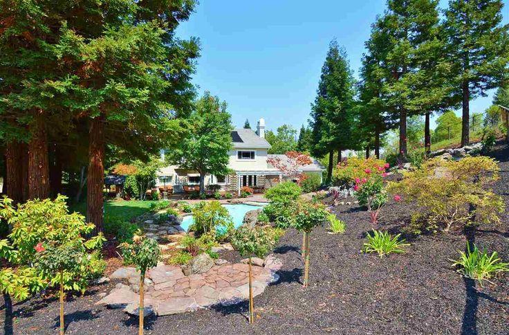 Dream Backyard #forsale #dreamhome 65 Wild Oak Pl, Blackhawk, Ca 94506