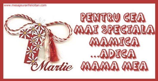 Pentru cea mai speciala mamica...adica mama mea