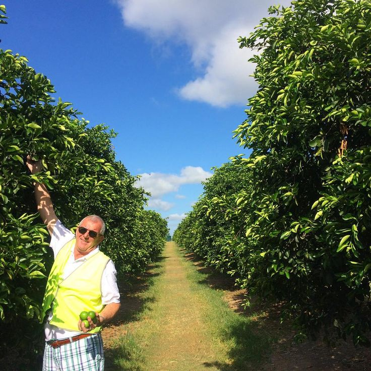Craig Spencer inspecting #SpencerRanch limes in Wallaville.