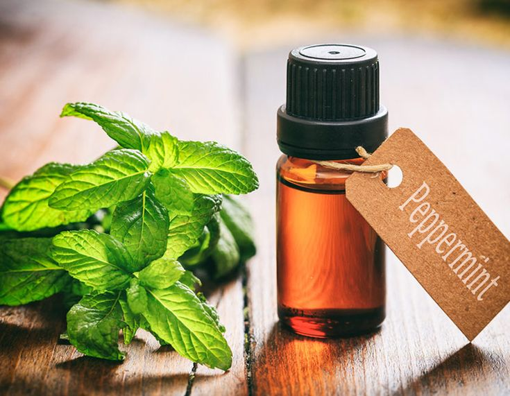 23 Peppermint Oil Uses to Naturally Boost Your Health
