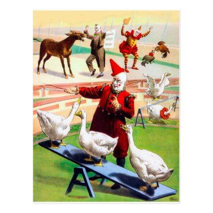 Clowns in Circus show with train animals vintage Postcard - vintage gifts retro ideas cyo