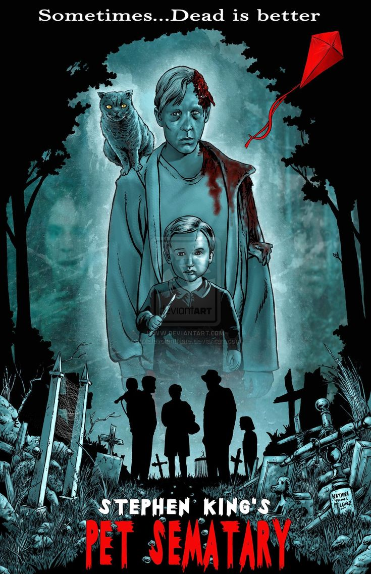 an analysis of the cemetery concept in the novel pet sematary by stephen king Read every stephen king novel  from the jaws concept and production  not the best interpretation of a king novel pet sematary although i did like.