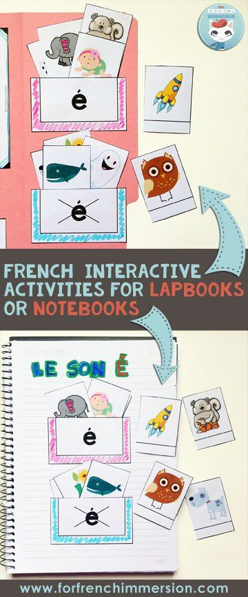 Sorting pockets: kids sort the words that include and don't include the focus sound. This activity is part of the French phonics lapbooks. Kids focus on one letter-sound correspondence at a time!