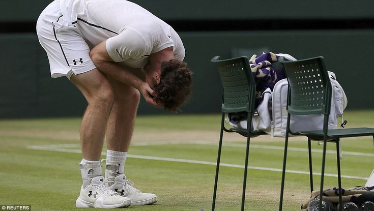 Andy Murray mania at Wimbledon increases as final tickets cost up to £21k for a pair | Daily Mail Online