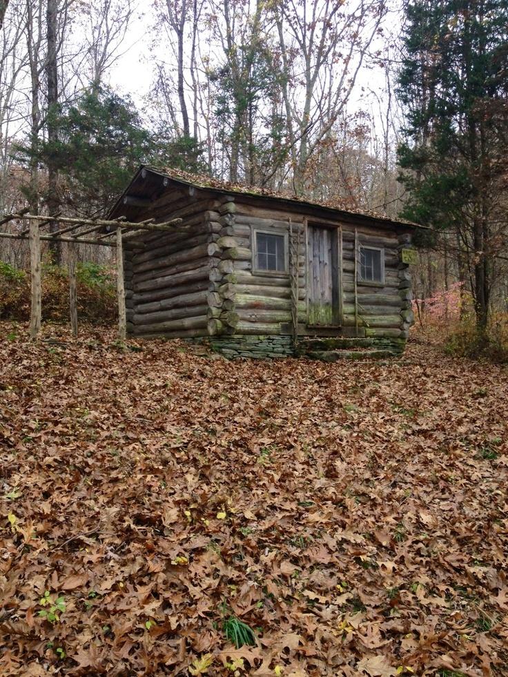 original log cabin..grape arbor?