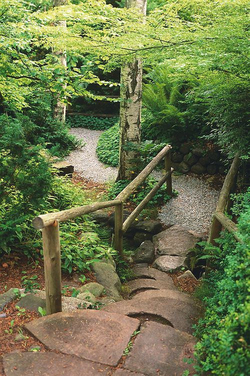 Steps and wooden railings leading to path under canopy of green trees in Spring, Filberg Lodge and Gardens, Comox, BC. by Patrick Leary