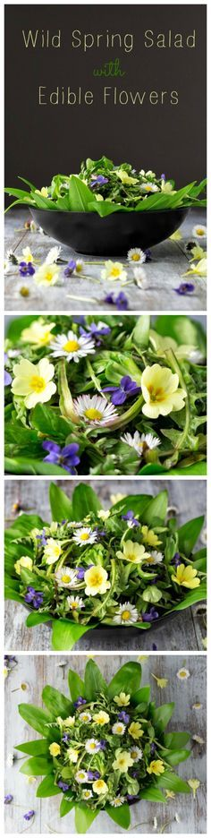 Perfect spring salad made with wild plants such as dandelion and wild garlic, decorated with edible flowers.
