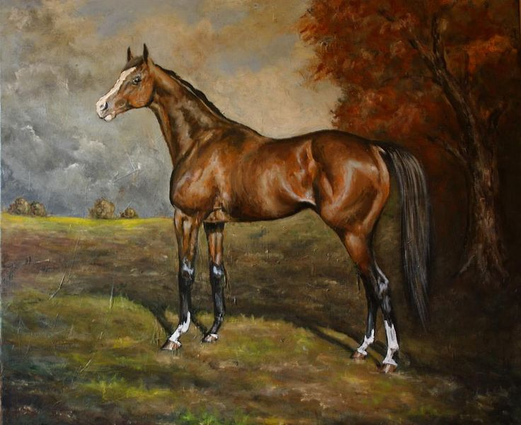300 best images about Horse Art on Pinterest | Spanish ...