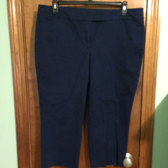 Ann Taylor Signature Crop Pants Ann Taylor Signature Crop Pants...wonderful condition! A pretty dark Royal blue color. Great for the office or causal. Bought them on Poshmark and they are too big Ann Taylor Pants Ankle & Cropped