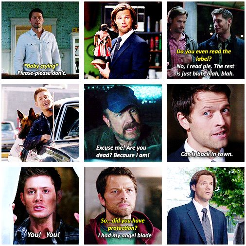 Season 9 funny moments [gifset]