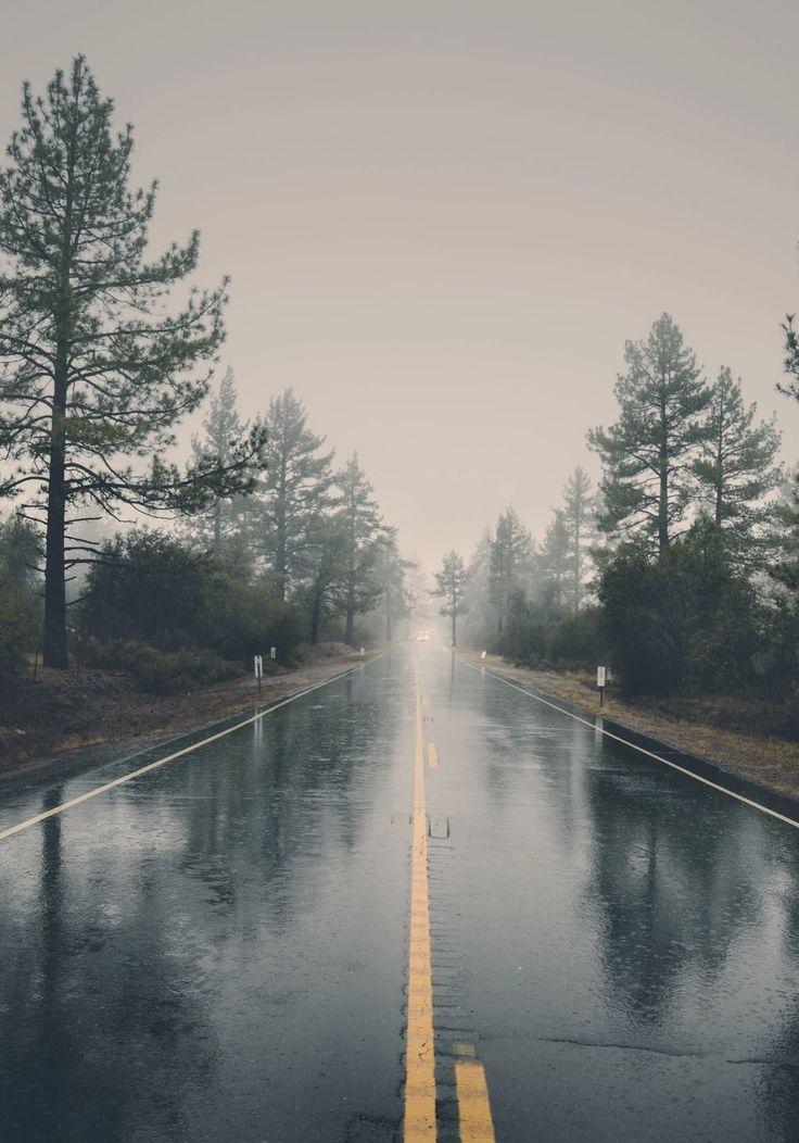 Rainy misty road (no location given) by veeterzy☔️