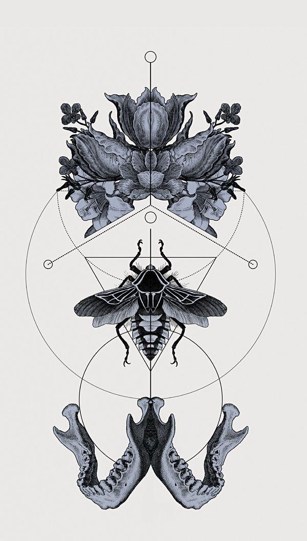 The Panoply Plates — Fine Art Prints by Hannes Hummel, via Behance