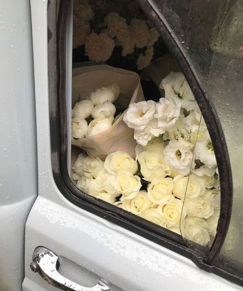 persistaghizadeh   VSCO Françoise Sagan, Picnic Set, My Favorite Image, Types Of Flowers, Photo Dump, Ice Cream, Pretty, Instagram, Dream Life